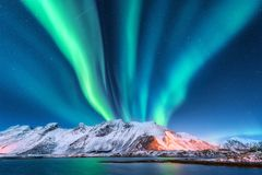 Северное сияние Острова Lofoten, Норвегия auric стоковое фото rf