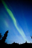 Северное сияние северного сияния спруса taiga Юкона Стоковое фото RF