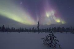 Северное сияние, Raattama, 2014 02 21 - 23 Стоковые Изображения RF