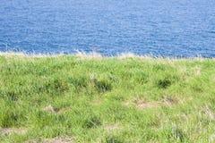 Северно ландшафт Ирландского с пасти на переднем плане стоковые фотографии rf