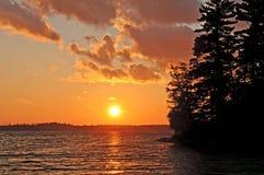 северные древесины захода солнца стоковые изображения rf