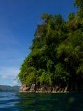 Северные джунгли Сулавеси Стоковое Изображение
