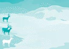 Северные олени Стоковые Фотографии RF