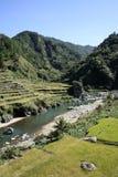 северные террасы риса philippines Стоковое Изображение RF