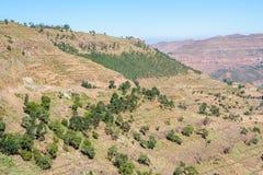 Северные эфиопские горы Стоковая Фотография