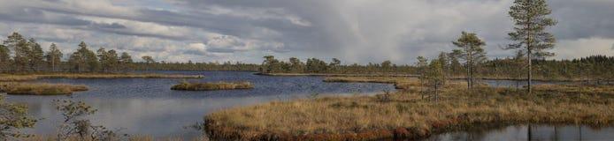 Северный ландшафт от трясин Финляндии стоковое изображение