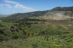 Северный Израиль Стоковые Фотографии RF