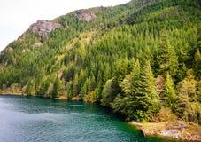 Северный национальный парк каскадов Стоковая Фотография