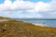 Северный океан Стоковая Фотография
