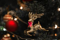 Северный олень рождества с красной смертной казнью через повешение связи на красивом рождестве Стоковая Фотография RF