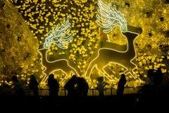 Северный олень рождества с украшением светов Стоковые Изображения RF