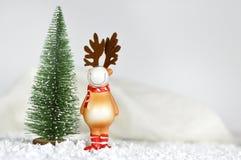 Северный олень рождественской елки и рождества Стоковые Фото