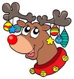 северный олень украшений рождества бесплатная иллюстрация