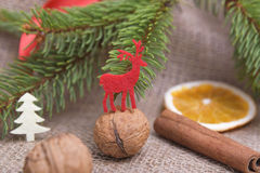 Северный олень красного цвета рождества Стоковая Фотография RF