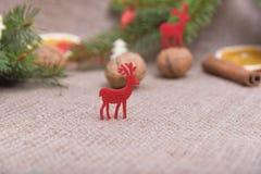 Северный олень красного цвета рождества Стоковые Изображения RF