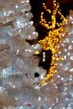 Северный олень на рождестве Стоковые Изображения RF