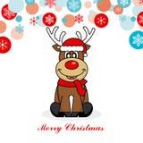 Северный олень одетый как santa Стоковая Фотография RF