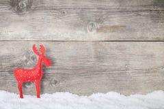 Северный олень рождества Стоковое фото RF