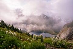 Северный пеший туризм национального парка каскадов Стоковые Фотографии RF