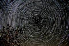 Северный полюс следа звезды Стоковые Изображения RF