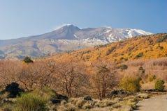 Северовосточный фланк вулкана Этна во время последней осени стоковые изображения