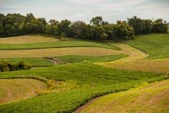 Северо-восточная обрабатываемая земля Айовы Стоковое Изображение