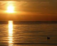 северо-восточный заход солнца Стоковые Изображения