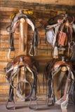 4 седловины и уздечки вися на стене Стоковые Фотографии RF