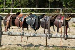 седловины лошади стоковое изображение rf