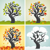 4 сезона установленного с деревом Иллюстрация штока
