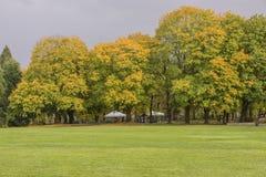 Сезонные изменения в голубом парке Орегоне озера стоковые фото