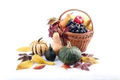 Сезонные плодоовощ и тыквы Стоковое Фото