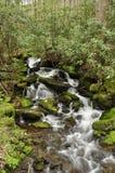 Сезонный водопад Стоковое Изображение