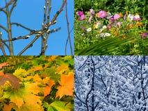 сезоны предпосылки стоковое изображение rf