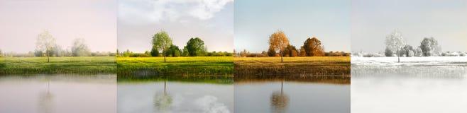 сезоны Стоковые Фото