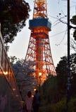 Сезон вишневого цвета туризма взгляда ночи башни токио внешний стоковое изображение