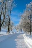Сезон зимы в городе стоковое изображение
