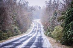 Сезон зимы в Йорке Южной Каролине стоковое изображение rf