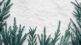 Сезон зимы, идеи концепций рождества с сосной и снег стоковые изображения rf