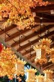 Сезон клена на падении, Японии стоковые изображения