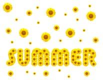 Сезон лета с солнцецветами стоковая фотография rf