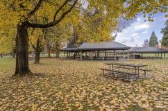 Сезон осени в парке Орегоне стоковое фото