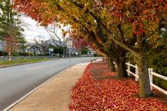 Сезон осени Новой Англии пригородный стоковая фотография rf