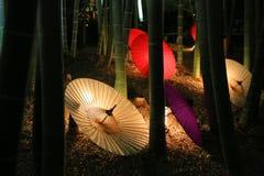 Сезон падения бамбука Киото ночи kodaiji стоковые изображения rf