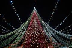 Сезон рождества, дерево с загоренными светами стоковая фотография rf