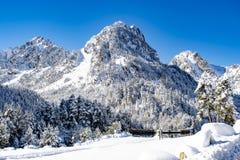 сезон снега Гора с снежком стоковое фото