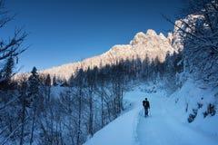 Сезон Snowshoes Стоковое Изображение RF