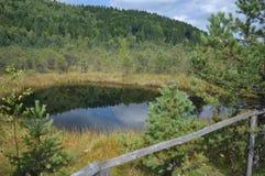 Секретное озеро Стоковое Изображение RF