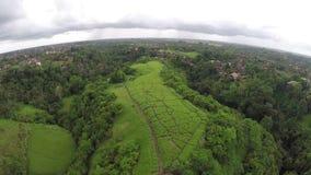 Секретные холмы в Бали Стоковые Фотографии RF