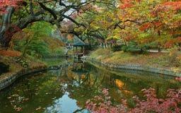Секретный сад на дворце Changdeokgung, Сеуле стоковые фотографии rf